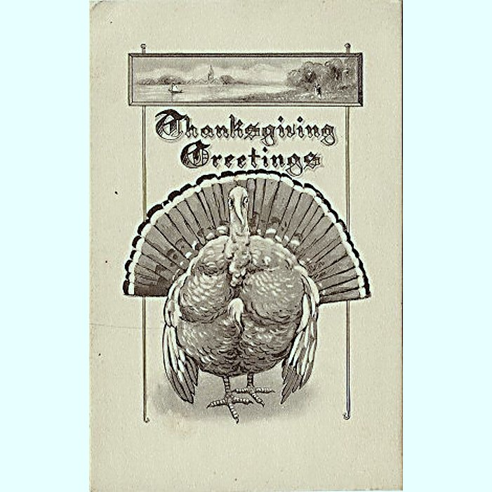Black and White Schlesinger Thanksgiving Postcard Divided Back U